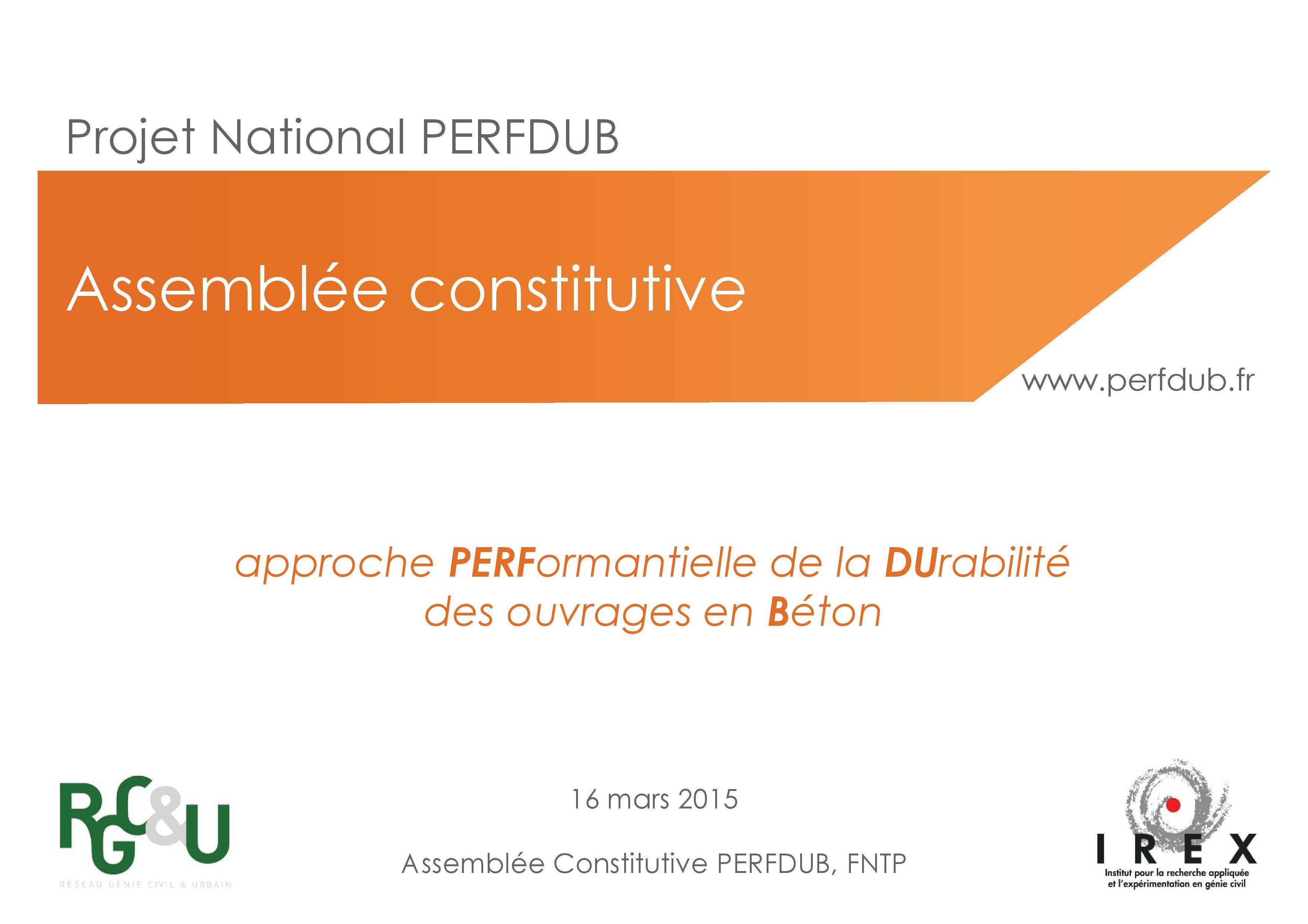 National Project PERFDUB is launched